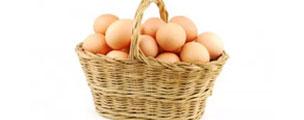 Eggbase